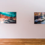 andrew_butkevicius_infrared_photography_exhibition,artcrawl