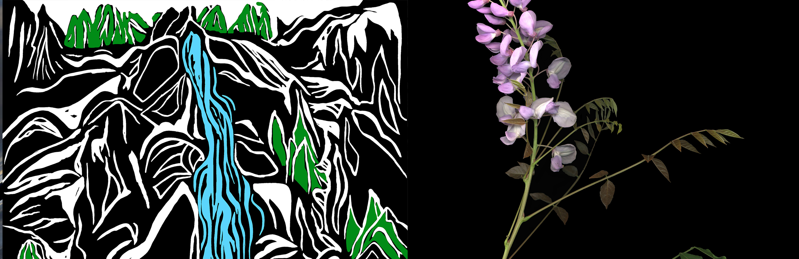 Do What You Like: Explorations in Digital Painting and Herbarium