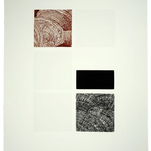 """12. """"Intuition"""" by Leszek Wyczolkowski. Aqutint, etching and embossing, 30""""x22"""", 2004."""