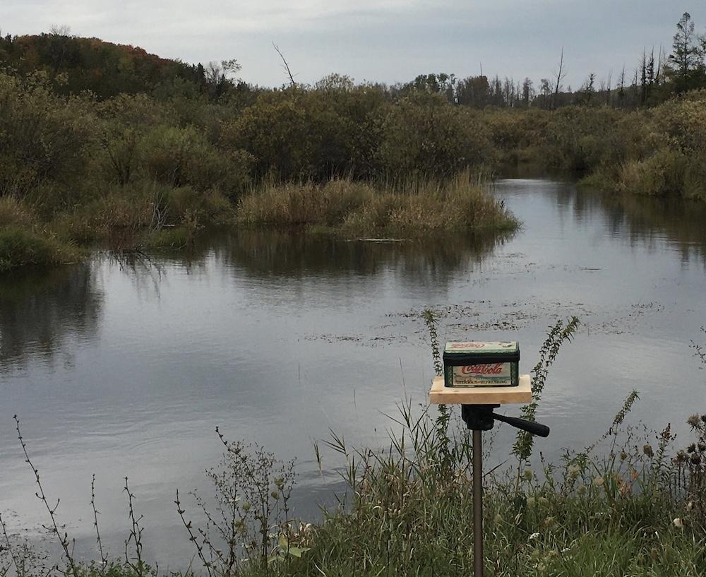 "Pinhole camera, used to photograph ""swamp"""