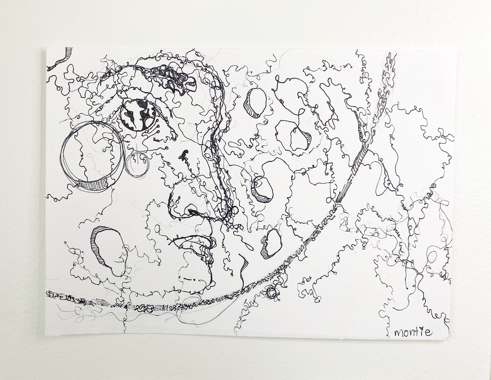 montie, Chrissy, pen and ink