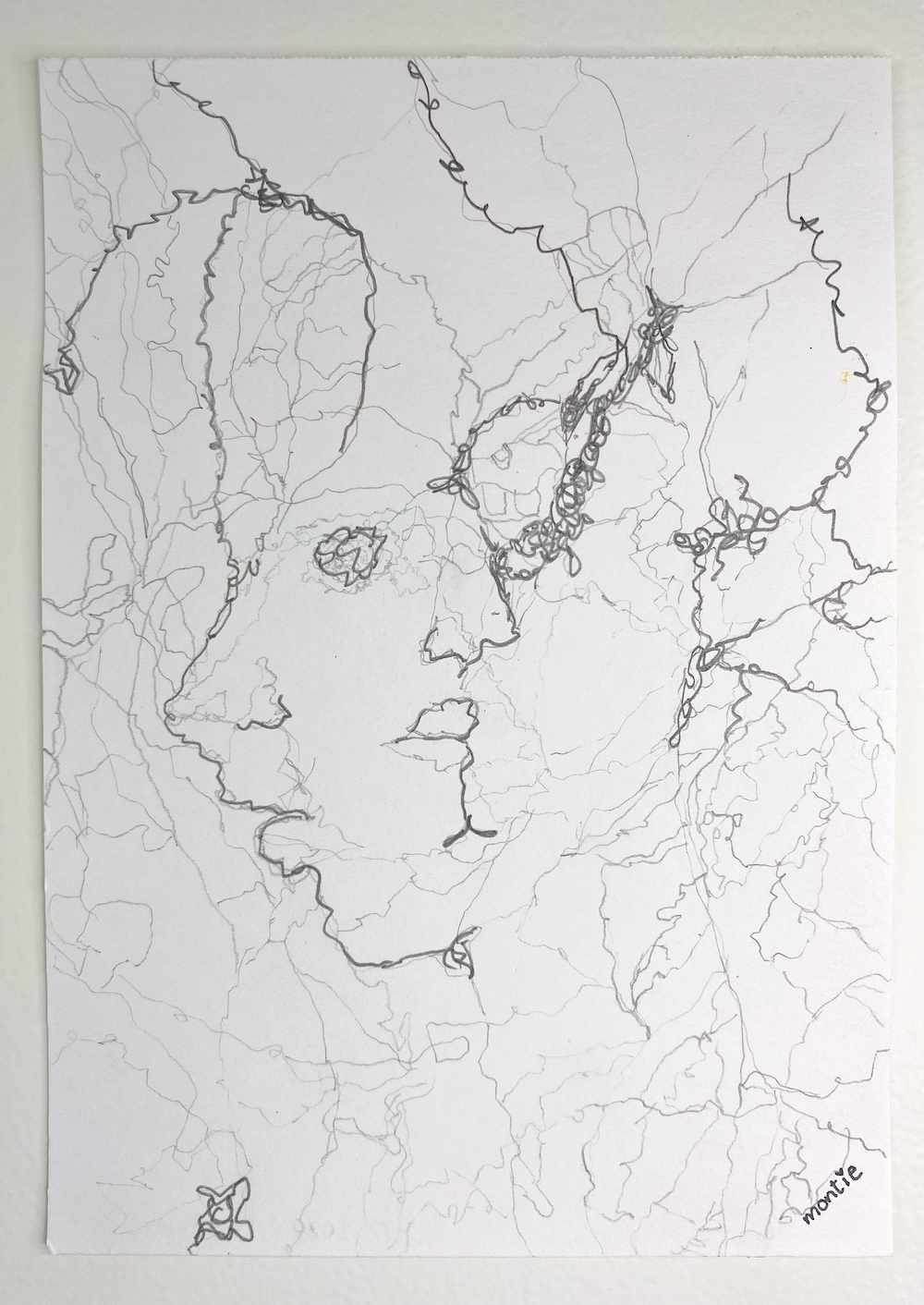 montie, Doubtfire, pencil drawing